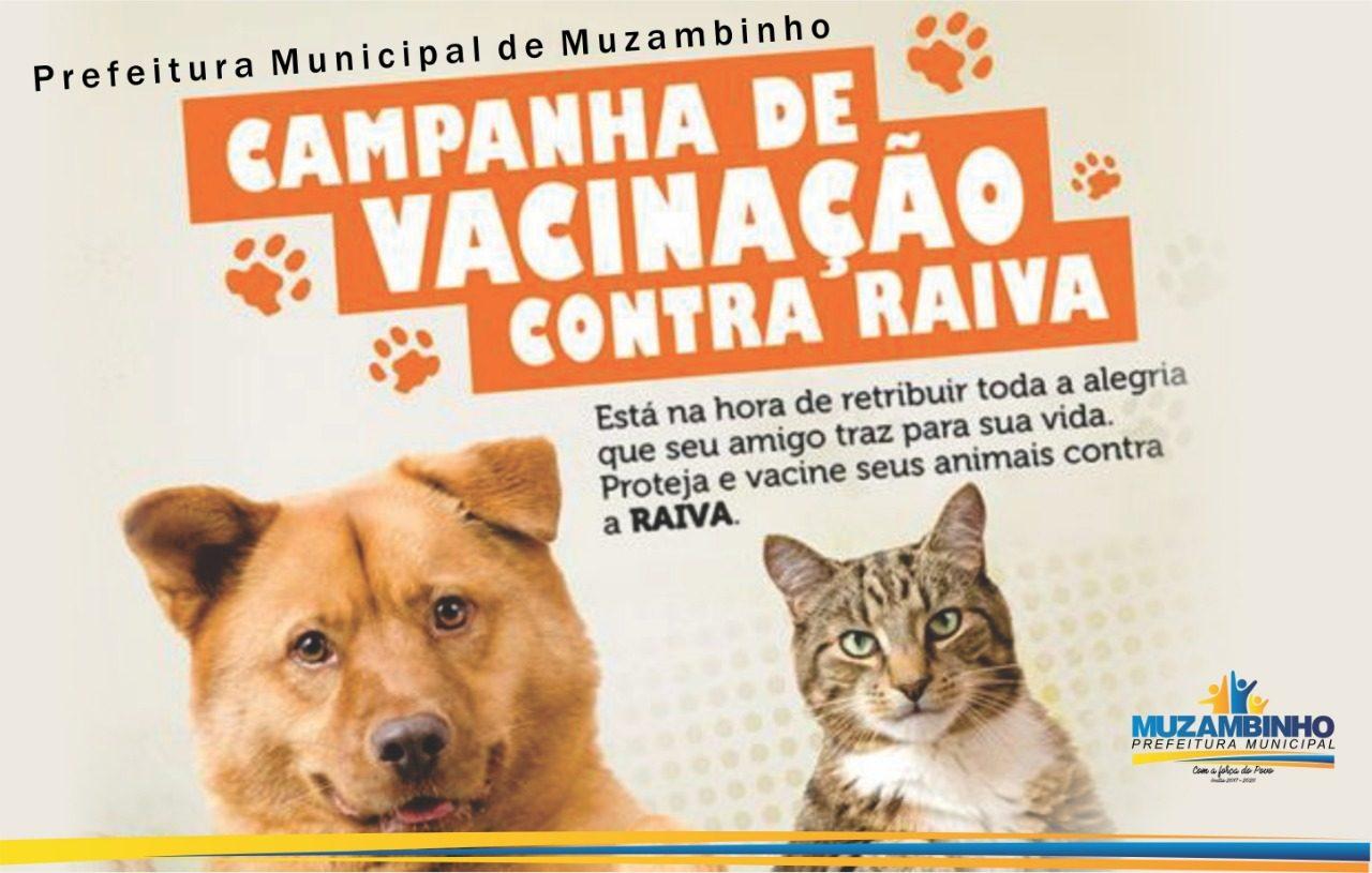 VacinaRaiva19a