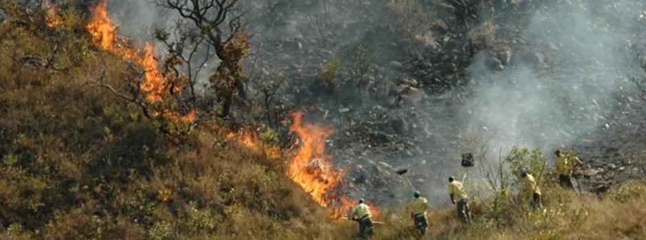 Combate_a_incêndio_floresta_em_Minas_-_Foto_Evandro_Rodney