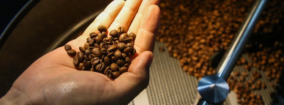 coffeee12134237