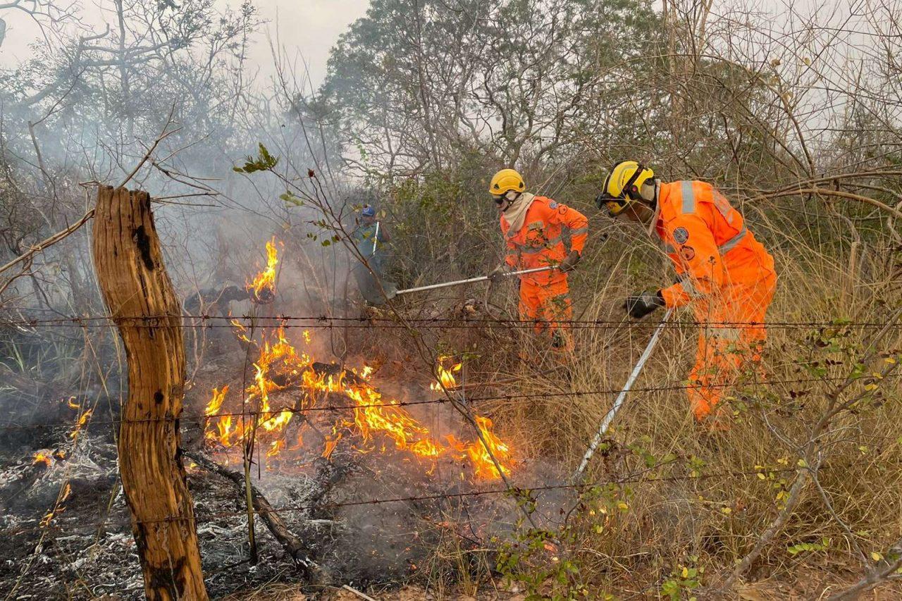 incendio-bombeiros-13-hora (3)